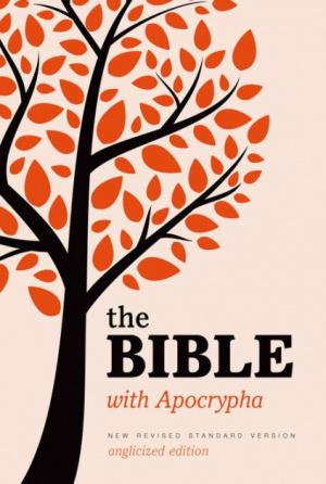 NRSV Bible with Apocrypha: Hardback