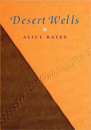 Desert Wells Pb