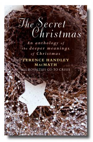 The Secret Christmas