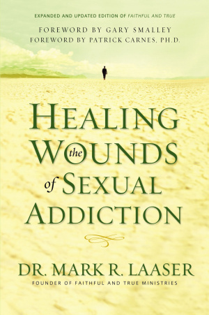 Healing the Wounds of Sexual Addiction paperback