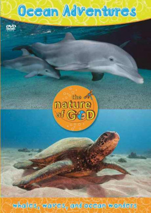 Ocean Adventures Vol 1 Dvd