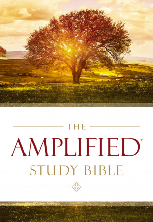 Amplified Study Bible