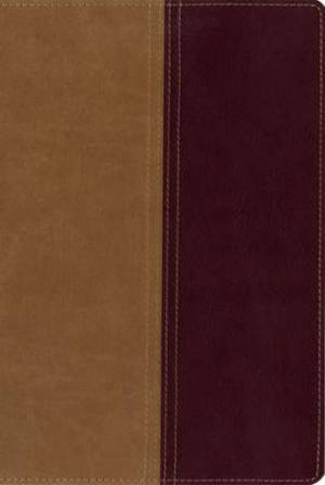 KJV and Amplified Side-by-side Bible Imitation Leather Brown Tan