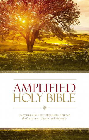 Amplified Thinline Holy Bible: Paperback