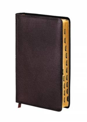 Amplified Thinline Holy Bible: Burgundy, Bonded Leather, Thumb Indexed
