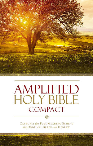 Amplified Compact Holy Bible