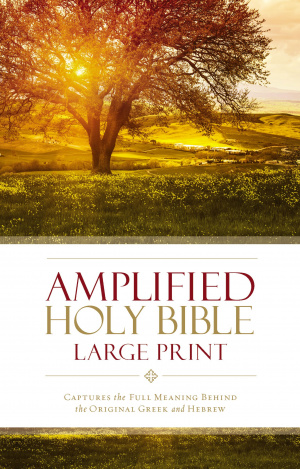 Amplified Large Print Bible