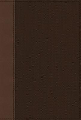 NRSV, Cultural Backgrounds Study Bible, Leathersoft, Tan/Brown, Comfort Print