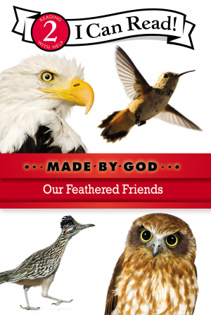 Our Feathered Friends