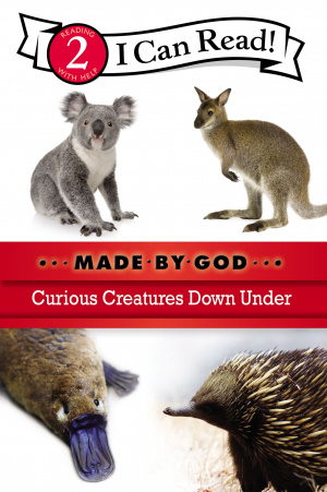 Curious Creatures Down Under