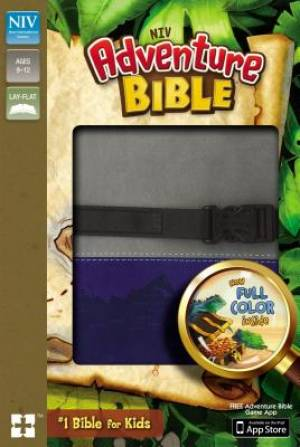 NIV, Adventure Bible, Imitation Leather, Gray/Blue, Full Color