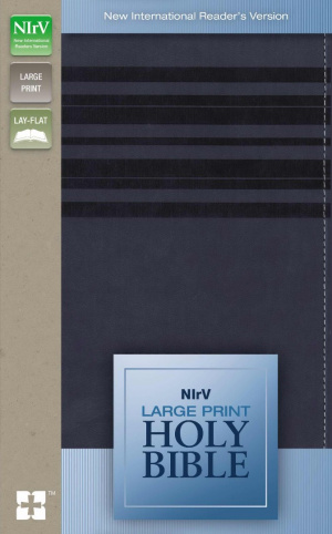 NIrV, Holy Bible, Large Print, Imitation Leather, Blue