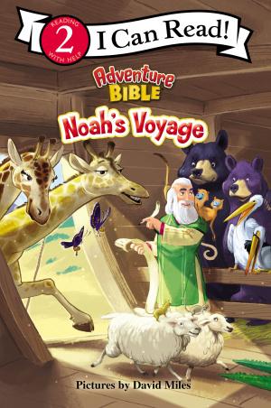 Noah's Voyage