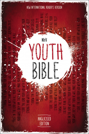 NIRV Youth Bible