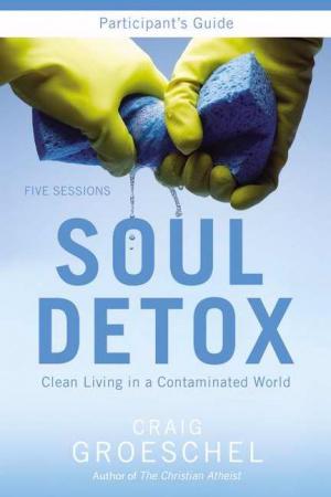 Soul Detox Participants Guide paperback