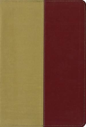 KJV / Amplified Parallel Bible Gold / Rich Red Imitation Leather