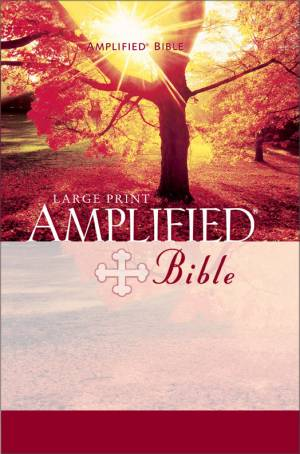 Amplified Large Print Bible: Hardback