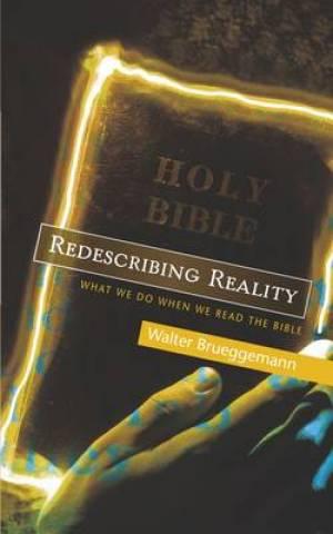 Redescribing Reality