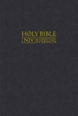 Niv version bible pdf