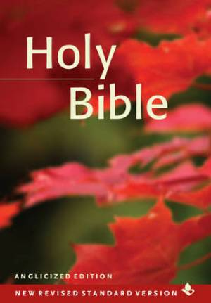 NRSV Popular Text Bible (Pack of 20)