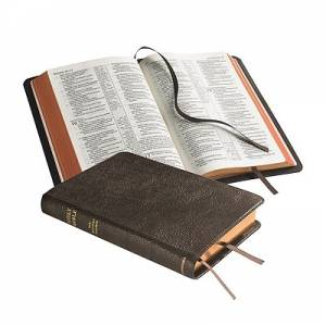 NASB Pitt Minion Reference Edition: Brown, Goatskin Leather