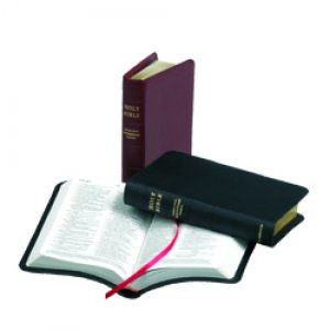 TNIV Personal Bible: Black, French Morocco Leather