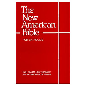 NAB Bible for Catholics: Paperback