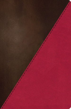 NKJV Study Bible: Full Colour, Imitation Leather, Thumb Indexed