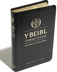 Y Beibl Cymraeg Newydd: Lledr