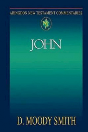 Abingdon New Testament Commentary - John