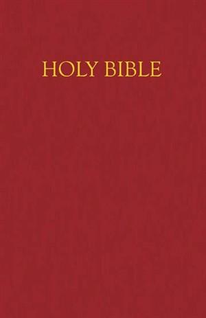 NRSV Children's Bible: Burgundy, Imitation Leather