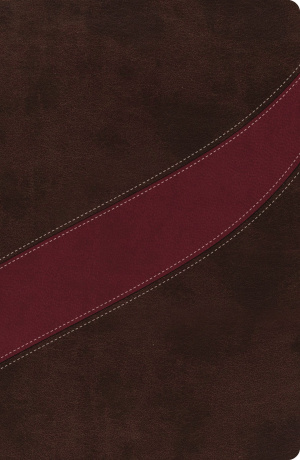 NASB MacArthur Study Bible: Cranberry/Earth Brown, Imitation Leather