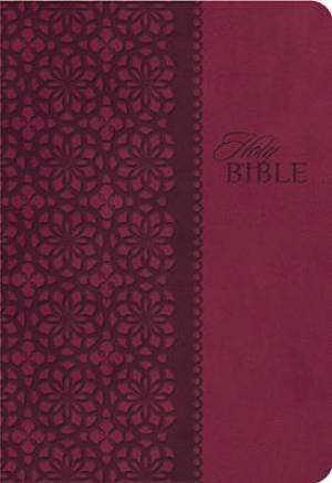 KJV Classic Personal Size Giant Print End-Of-Verse Reference Bible Giant Print