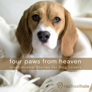 Four Paws From Heaven Gift Edition