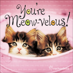 You're Meow-velous!