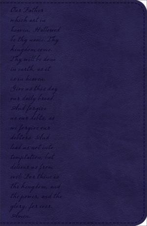 KJV Pray the Scriptures Bible Navy, Lord's Prayer Design Duravella