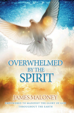 Overwhelmed By The Spirit Paperback Book