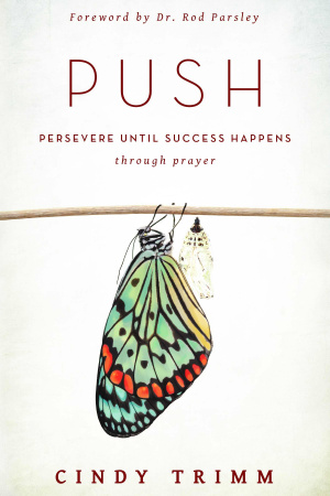 PUSH: Persevere Until Success Happens Through Prayer Paperback