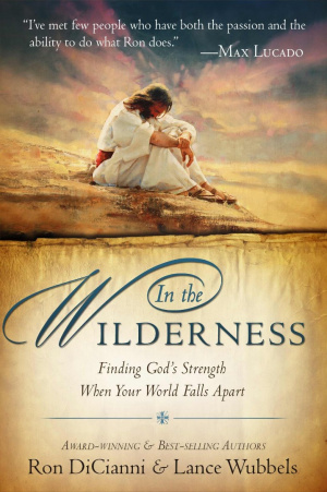In The Wilderness Paperback Book