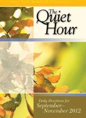 Bible In Life Adult Quiet Hourfall