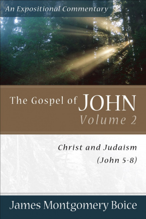 John 5-8 : The Gospel of John: Christ And Judaism,