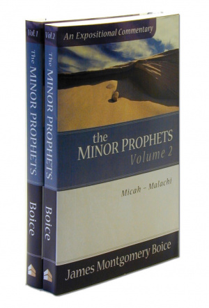 The Minor Prophets : Expositional Commentary