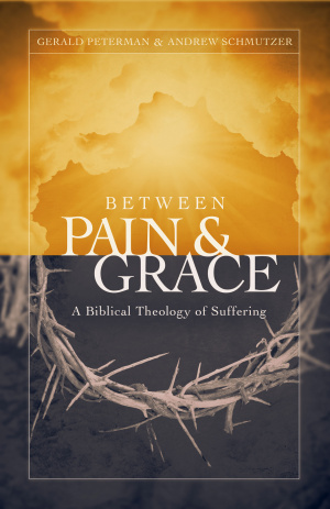 Between Pain And Grace Paperback