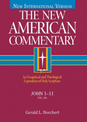 New American Commentary Volume 25a  John
