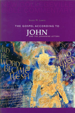 John and 1 2 & 3 John : New Collegeville Bible Commentary