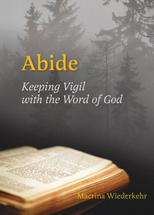 Abide : Keeping Vigil With The Word Of God