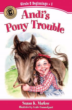 Andis Pony Trouble Pb