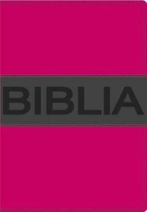 NVI Santa Biblia, Ultrafina Compacta, Collecci N Contempo