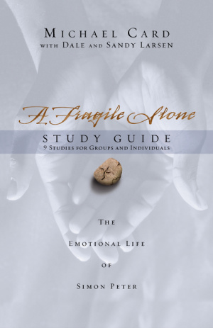 Fragile Stone, A : Study Guide