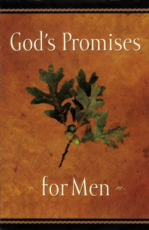 God's Promises for Men